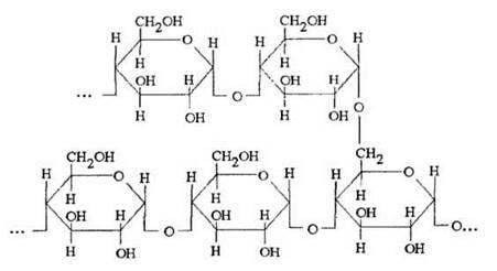 مولکول نشاسته چه ماده ای است؟ نشاسته و سلولز نمایانگر پلیمرهای ...